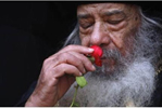pope_shenouda_rose